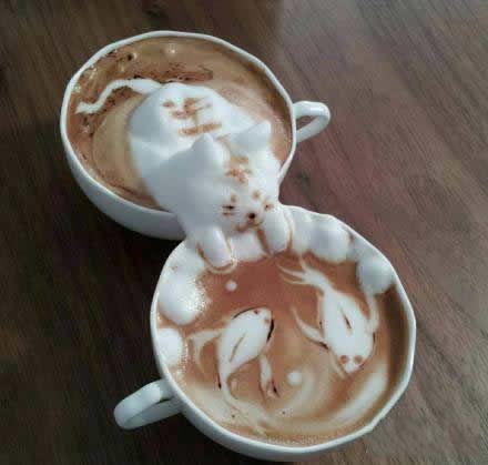没人能阻挡咖啡花了