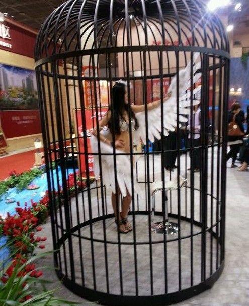 请问这鸟怎么卖的?