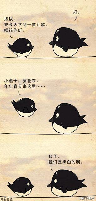 小燕子的故事。。有一个真相。。