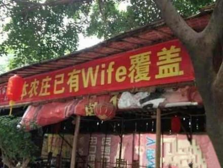 请问庄主,是免费Wife吗?