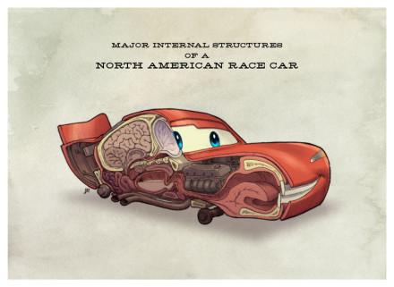 汽车总动员解剖图