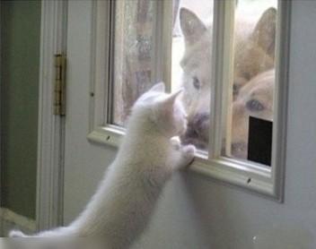 等会儿我就找你出去玩!!!