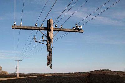 有没有见过这样的电线杆