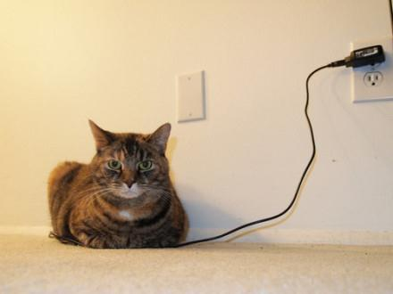 愚蠢的人类,我电量充满之时,就是你们的末日就到了!