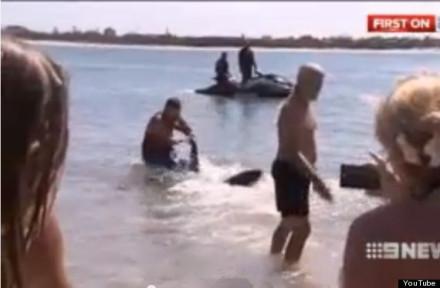 不久前澳洲海边突现鲨鱼。此时在浅水玩耍的几个小孩随时可能遭鲨鱼攻击。一位来澳洲度假的英国爷爷见状立刻跳入水中,抓起鲨鱼尾巴,企图将它拖回海里。搏斗过程中老爷子险些被鲨鱼咬断腿。最终鲨鱼被赶跑孩子们得救,爷爷走红全球。可最近老爷子因此被单位开除,因为他去澳洲游玩时请的是病假...
