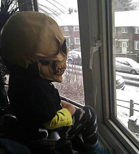 熊孩子为了吓邻居,已经在这里坐了一早上了。