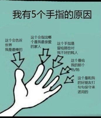 终于知道为什么我们长五根手指了。。「转」