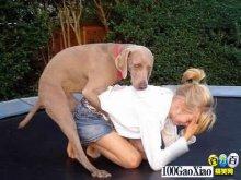 哇,狗狗也忍不住了