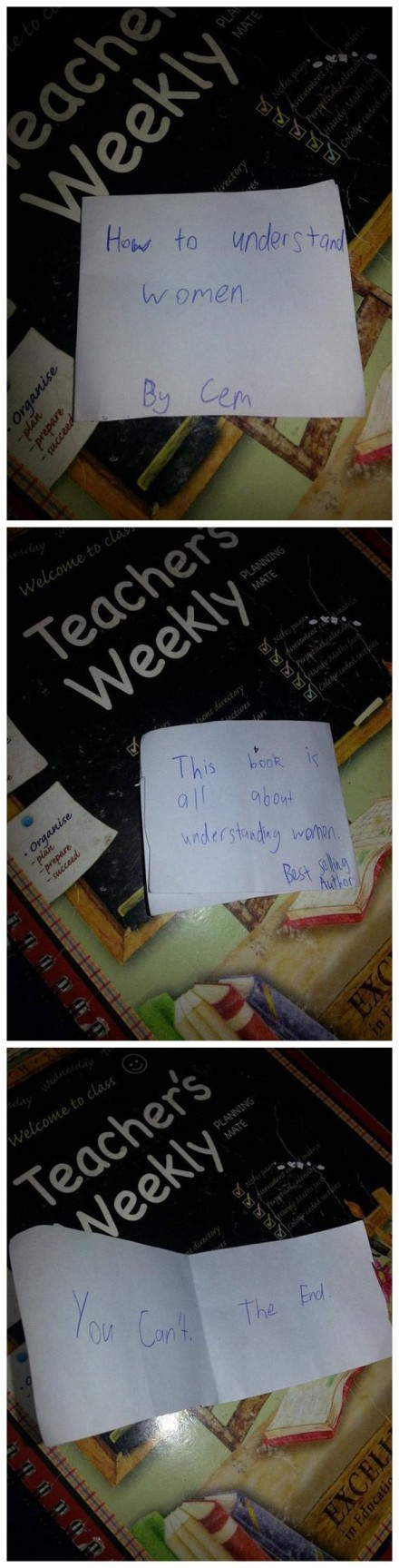 一个12岁男孩的书《如何理解女人》,绝壁是天才啊!详尽而又深入。