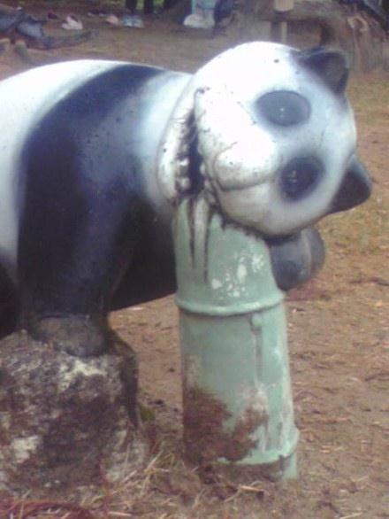今天在公园看到一只熊猫,吓尿了。。。