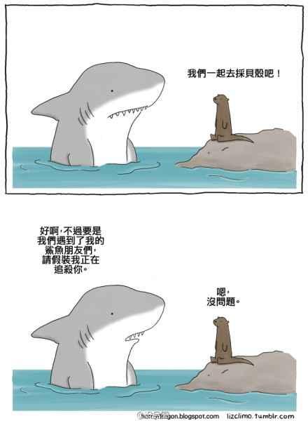鲨鱼的约定