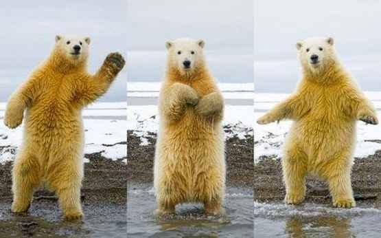 妹子,一起来跳个舞吧!~
