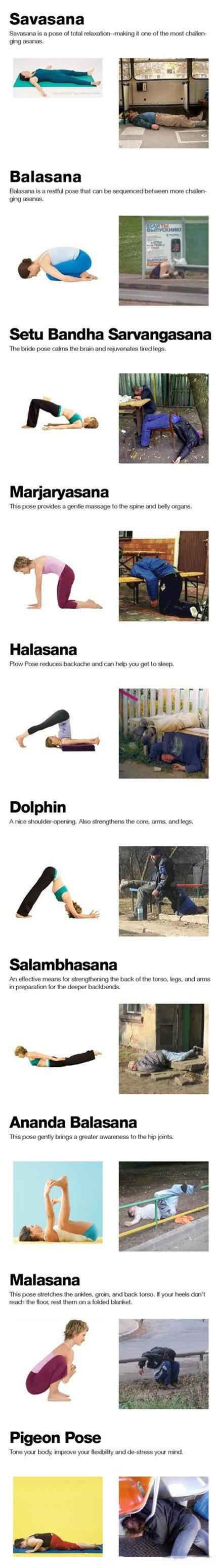 我有伏特加,何需练瑜伽?