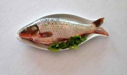 每次买鱼时,我都会让伙计帮我把鱼翅剁了扔掉。不吃鱼翅,是我心里暗暗许下的承诺。#做一个有社会责任感的屌丝#(via @理想彼岸喜剧工厂 )