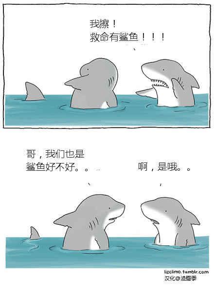 天然呆鲨鱼,太萌了!~