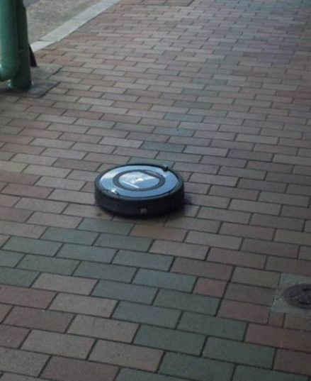 """啊哟,笑死我了。。。有人在東京都台東区合羽橋的交叉路口看到了迷路的Roomba(自动清洁机器人)。。。。""""它超级卖力的在打扫街道。。。这货是离家出走ing还是主人要放养它啊。"""