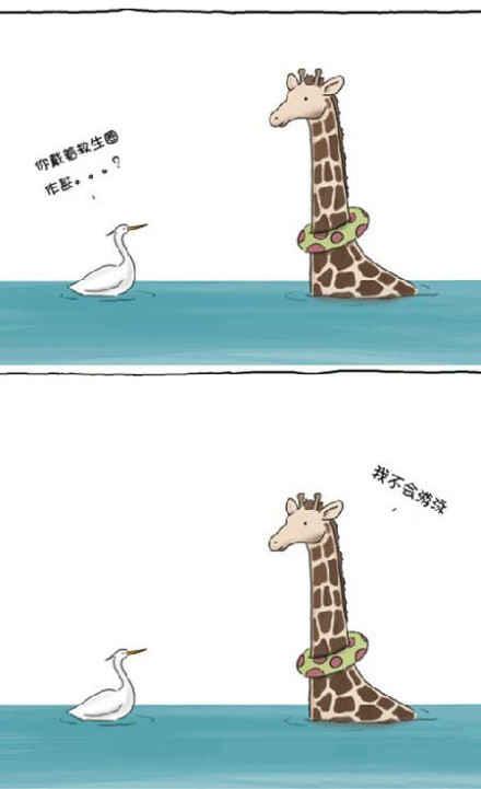 长颈鹿,你就是冷笑话界的奇葩~