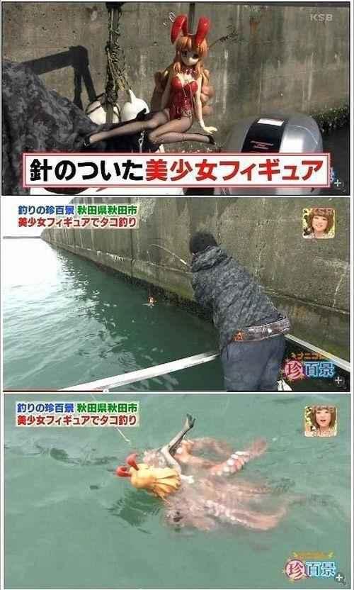 原来章鱼还可以这样钓!章鱼中的屌丝,你也太不矜持了。。。