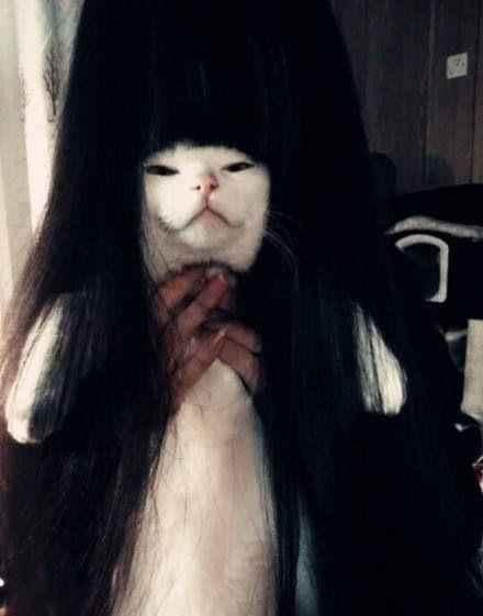 贞子出没请注意,大晚上的吓死个人了有木有?