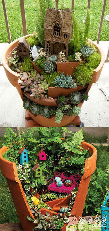 破花盆里的春天,看完就想动手把花盆砸了的有木有