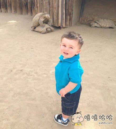 动物园不常看到的画面,小朋友看蒙圈了