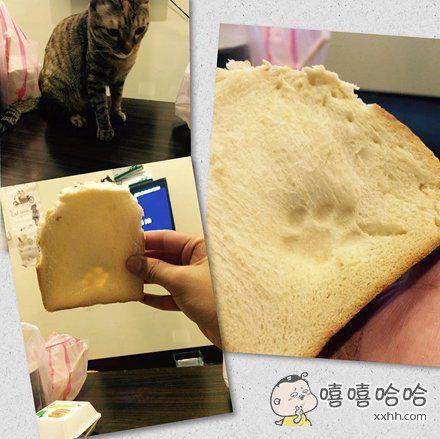 一网友想吃早餐的时候,看到面包变成了这样。 喵:怪朕咯?