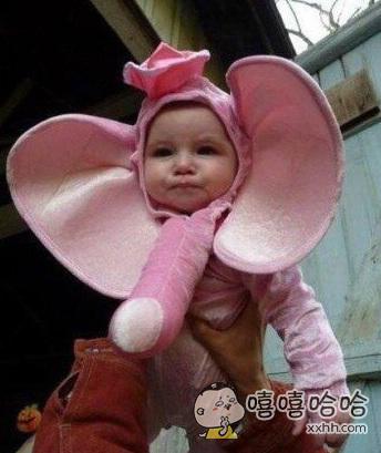 老婆给女儿买了个大象头套,可我总觉得哪里怪怪的