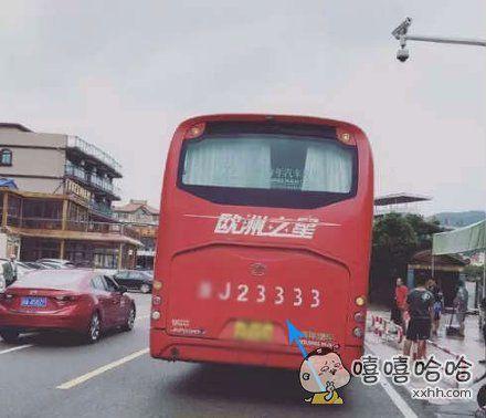 真开心巴士
