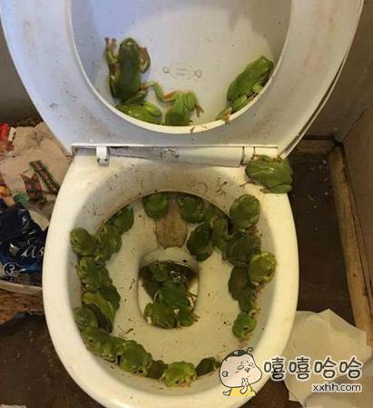洪水过后的厕所