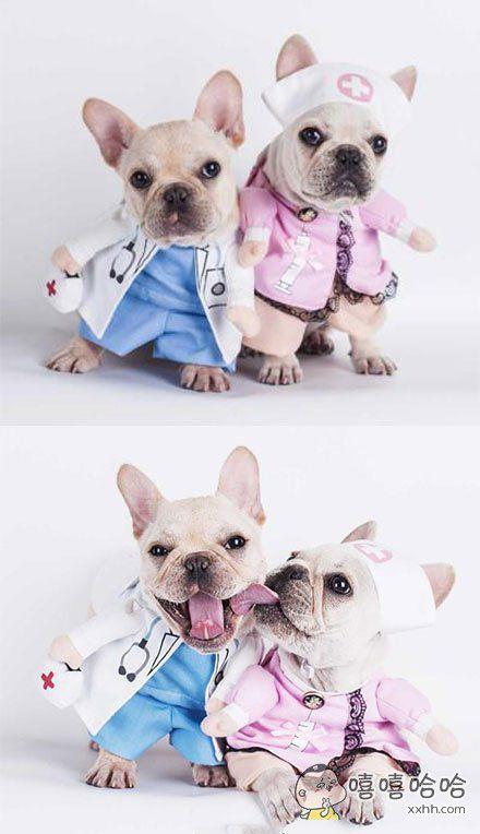 老军医和小护士的故事