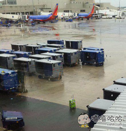 行李箱是不是迷路了?