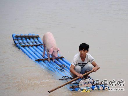 大哥,你要带着俺老猪去哪啊?