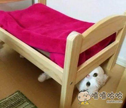 我不应该在床上,我应该在床底?