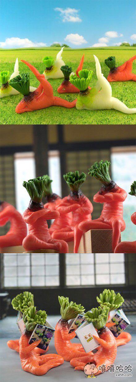 岛国音波屋推出了一系列忧郁的萝卜摆饰,名曰《恶萌》!