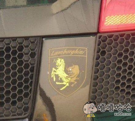 这是什么车,兰博海泥?