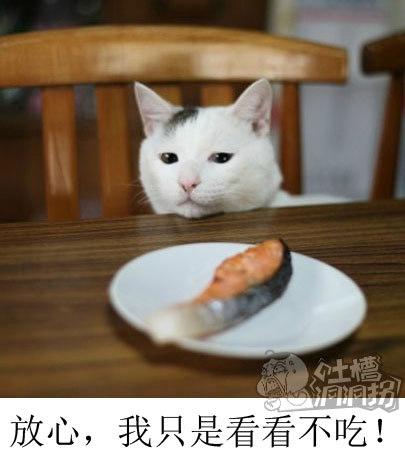 放心,我只是看看,我不吃!