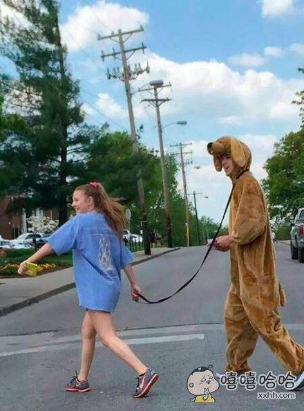 妹子,你这养得巨型犬吗?