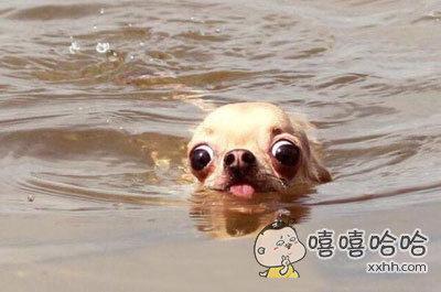当泳池水深快要到鼻子时