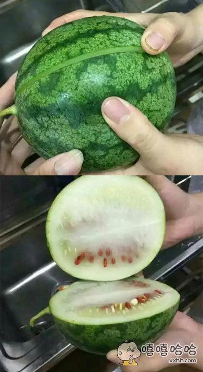 网友花五元买了一个西瓜之后……
