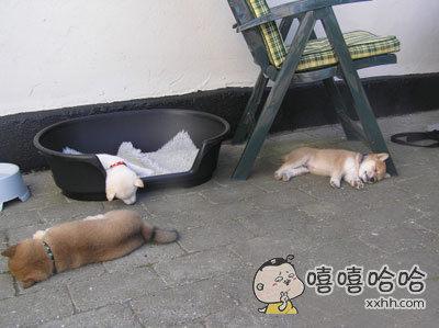 吃完午饭在办公室昏昏欲睡的我们……