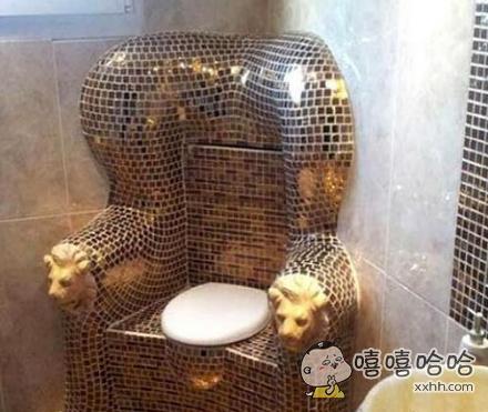 每次上厕所都感觉自己是国王