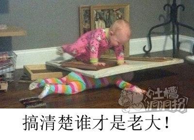 一家不容俩宝宝!