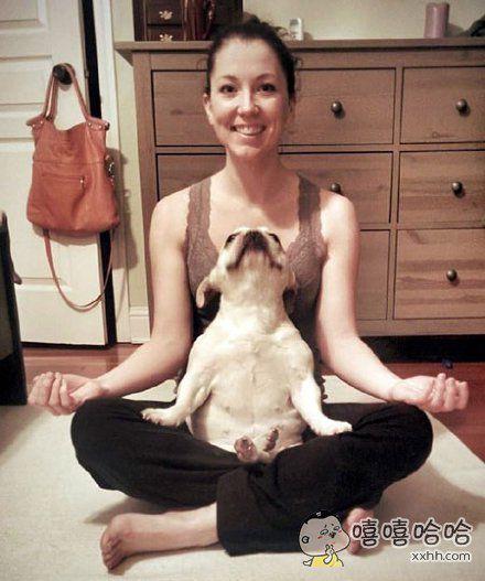 汪:我也会做瑜伽