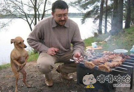 主人,烤好了吗?人家等不及了。