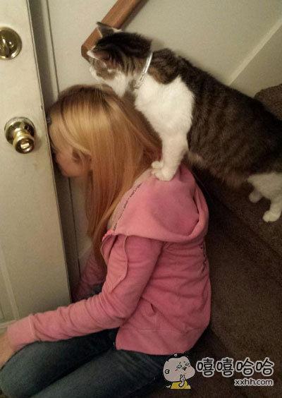 家里新来了只流浪猫,很担小,躲在屋里吃猫粮。。。
