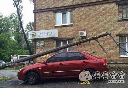 车主肯定做了不少好事的。