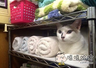 准备拿毛巾的一瞬间吓了一大跳