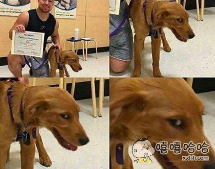 经历了无数次考试作弊,你终于顺利毕业,露出了会心的笑容