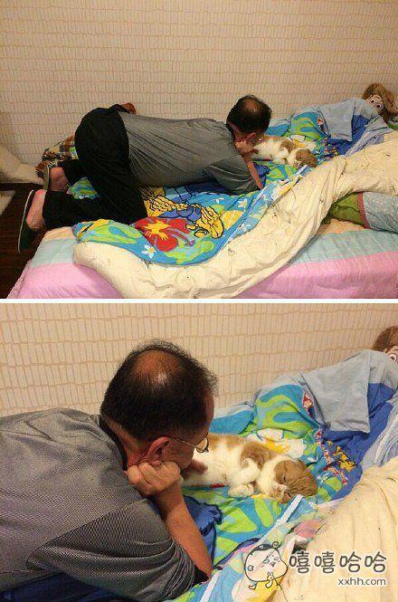 一开始不喜欢猫坚决不准养猫,后来。。。