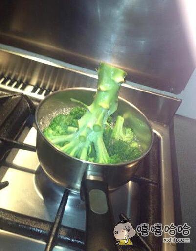 一回家看见女友在煮西兰花,那场面太凶残我不敢看!以后再也不敢让她做饭了。。。